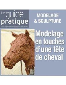 Modelage en touches d'une tête de cheval - Guide Pratique Numérique