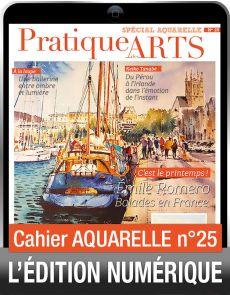 TÉLÉCHARGEMENT - Cahier spécial AQUARELLE 25 - Pratique des Arts