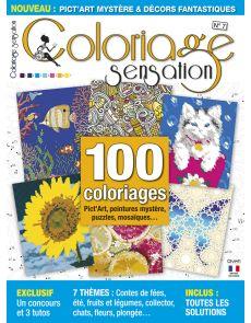 Coloriage Sensation n°7 - Pict'Art, peintures et puzzles mystères, mosaïques à colorier…
