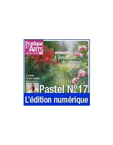 Téléchargement du Cahier spécial Pastel n°17 - Pratique des Arts