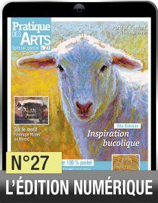 Téléchargement du Cahier spécial Pastel n°27 - Pratique des Arts
