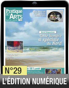 Téléchargement du Cahier spécial Pastel n°29 - Pratique des Arts