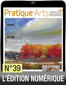 TELECHARGEMENT - Cahier Pastel n°39 - Pratique des arts