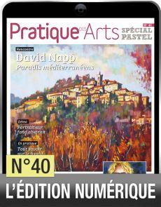TELECHARGEMENT - Cahier Pastel n°40 - Pratique des arts