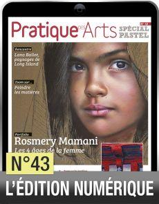 TELECHARGEMENT - Cahier Pastel n°43 - Pratique des arts