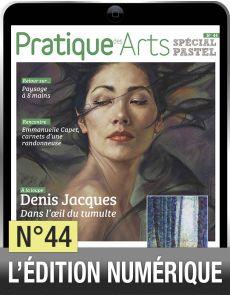 TELECHARGEMENT - Cahier spécial Pastel n°44 - Pratique des arts
