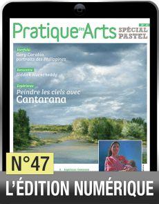 TELECHARGEMENT  - Cahier Spécial Pastel 47 - Pratique des Arts