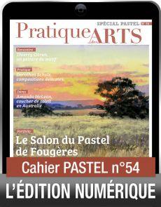 TÉLÉCHARGEMENT - Cahier spécial PASTEL 54 - Pratique des Arts