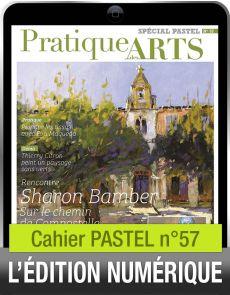 TÉLÉCHARGEMENT - Cahier spécial PASTEL 57 - Pratique des Arts