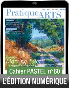 TÉLÉCHARGEMENT - Cahier spécial PASTEL 60 - Pratique des Arts