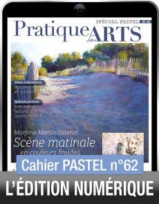 TÉLÉCHARGEMENT - Cahier spécial PASTEL 62 - Pratique des Arts