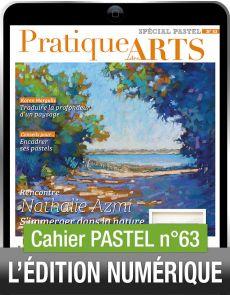 TÉLÉCHARGEMENT - Cahier spécial PASTEL 63 - Pratique des Arts