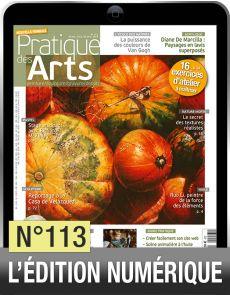 Téléchargement de Pratique des Arts n°113