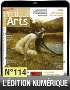 Téléchargement de Pratique des Arts n°114 + Agenda Artistique
