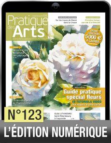 Téléchargement de Pratique des Arts n°123 avec 20 tutoriels vidéo OFFERTS