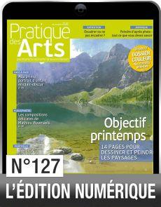 Téléchargement de Pratique des Arts n°127