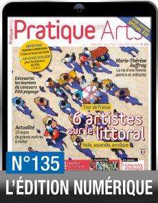 TELECHARGEMENT - Pratique des Arts numéro 135 - Le Tour de France des artistes