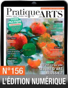 TÉLÉCHARGEMENT : Pratique des Arts 156 en version numérique