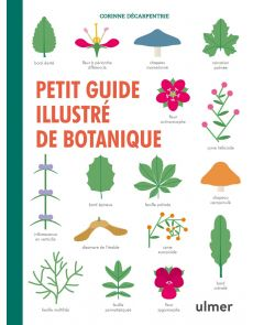 Petit illustré de botanique - Corinne Decarpentrie