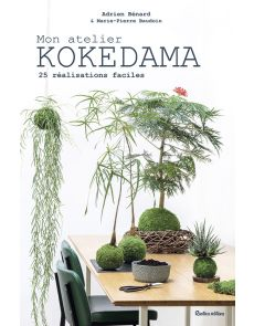 Mon atelier Kokedama - 25 réalisations faciles