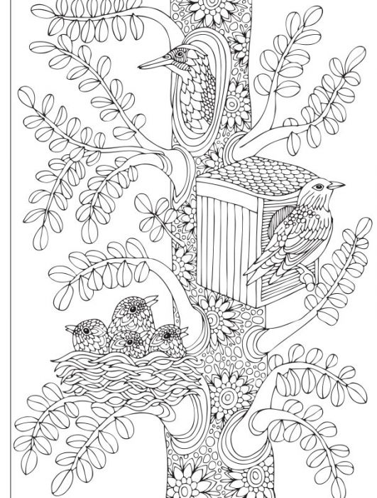 Coloriage Ambiance Zen 2 Cahier Special Adorables Chats