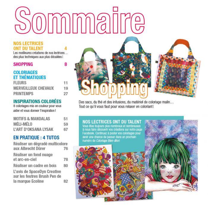 Coloriage Cheval Hiver.Coloriage Bien Etre 16 Themes Fleurs Merveilleux Chevaux Motifs Et Mandalas Printemps